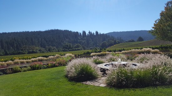 Goldeneye Winery: The views are why you come here