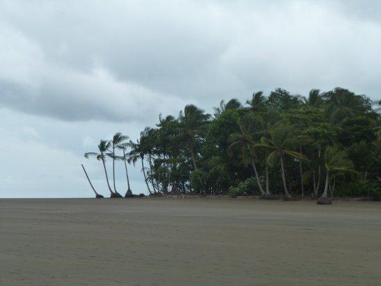 Ballena, Costa Rica: Playa donde bañarte o disfrutar del paisaje