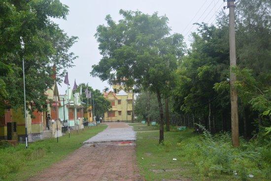 Bakkhali, Индия: Henry Island: way to beach, view from watch tower & sundari complex