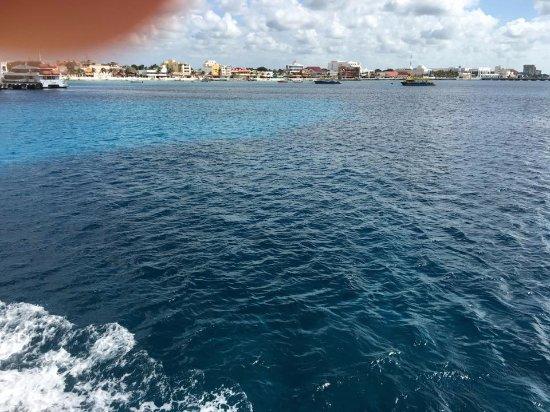 UltraMar Ferry : Ya bien cerca de Cozumel