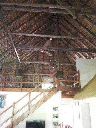 Phalaborwa, Sudafrica: IMG-20160827-WA0007_large.jpg
