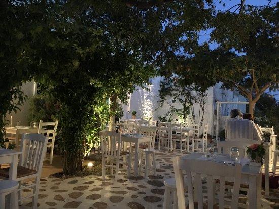 Eva's Garden: photo0.jpg