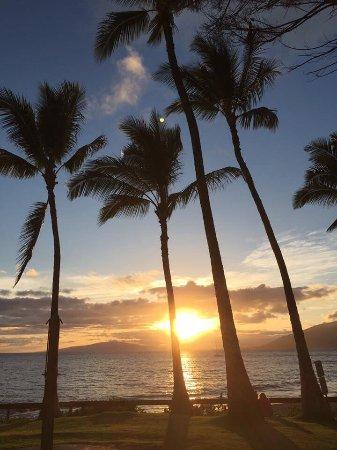 Maui Coast Hotel: Strand aan de overkant van het hotel, met elke dag een mooie zonsondergang !!