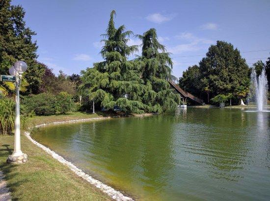 Monastier di Treviso, Ιταλία: La vista del laghetto.