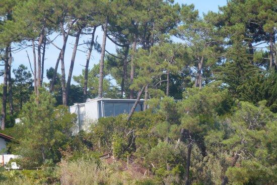 Union des Bateliers Arcachonnais: Maison construite parmi les pins