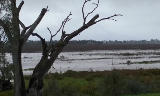 Natimuk, Australia: Lake and creek coming alive during floods