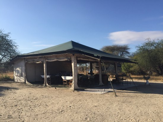 Whistling Thorn Tented Camp: photo2.jpg