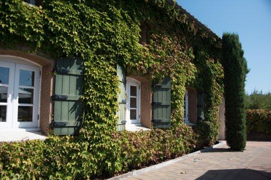 Viansa Winery and Italian Marketplace: Viansa Winery Sonoma