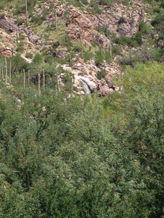 Loews Ventana Canyon Resort: photo4.jpg