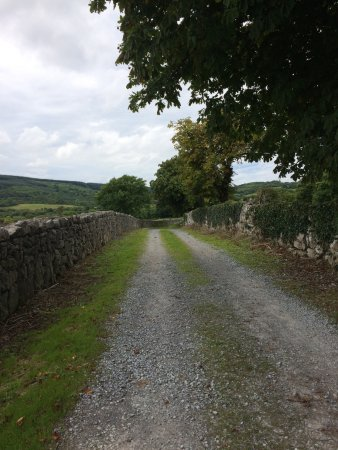 Corofin, Irland: Road to ruins
