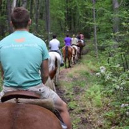 White Haven, PA: Customers enjoying a scenic trail ride at Mountain Laurel Riding Stable