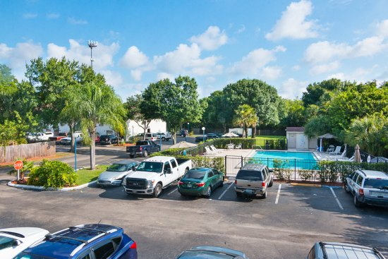 Motel 6 Tampa - Fairgrounds: Pool