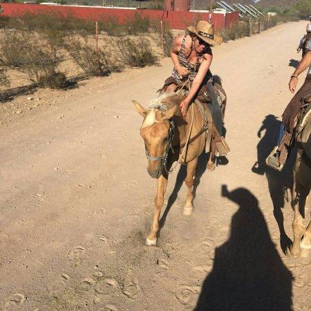 White Stallion Ranch: IMG_20160906_132503_large.jpg