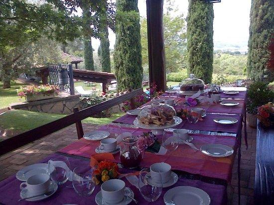 Relais Gli Ulivi: Colazione in giardino e aperitivo bordo piscina