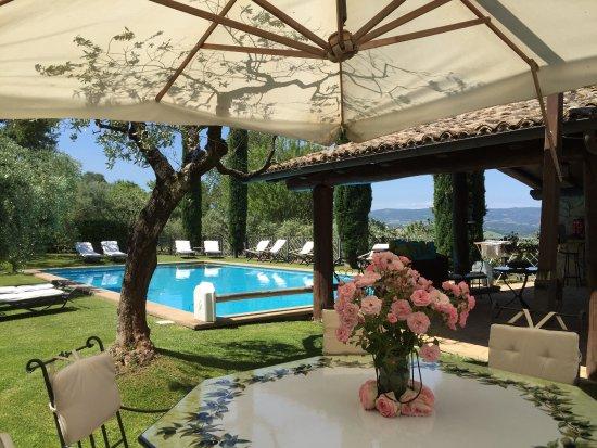 Monteleone d'Orvieto, Italien: Colazione in giardino e aperitivo bordo piscina