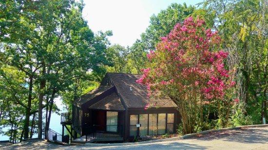 Foto de Treetop Village