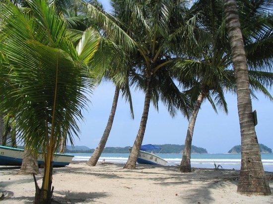 Beach Bar & Cabinas Las Olas