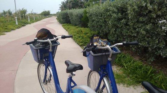 Miami Beach Boardwalk: Nuestras bicis de citi-bike alquiladas para el recorrido!