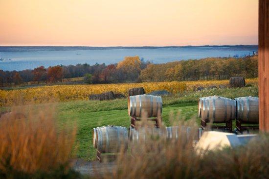 Lodi, estado de Nueva York: Lake View in Fall at Lamoreaux Landing Wine Cellars