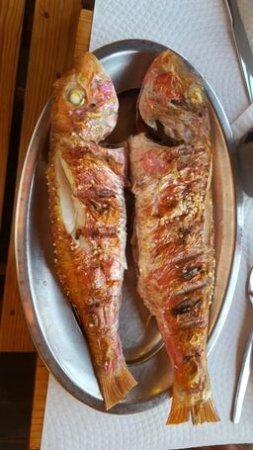 Restaurante A Choupana : Fisch vom Grill