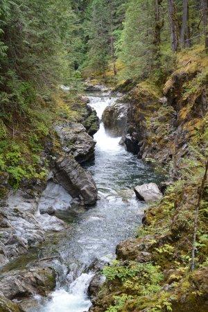 Little Qualicum Falls Provincial Park: Little Qualicum Falls