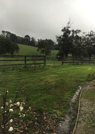 Wiggley Bottom Farm