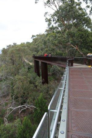 Lotterywest Federation Walkway: views from the walkway