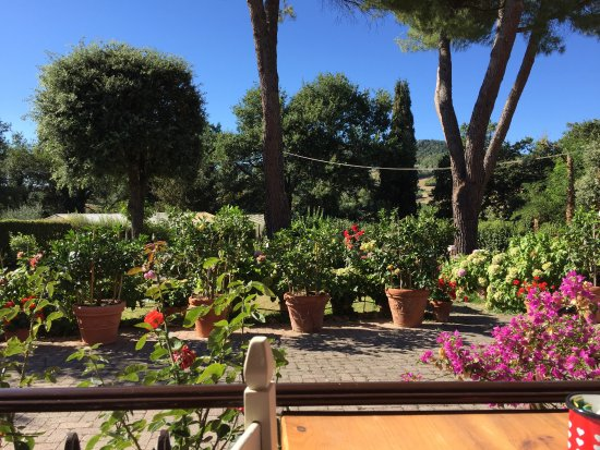 Pancole, Italie : View from breakfast area