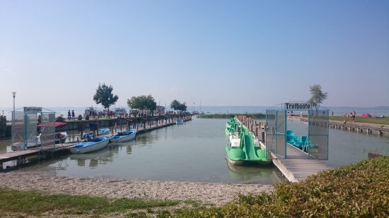 Single neusiedl am see