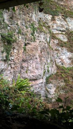 Wookey Hole Foto
