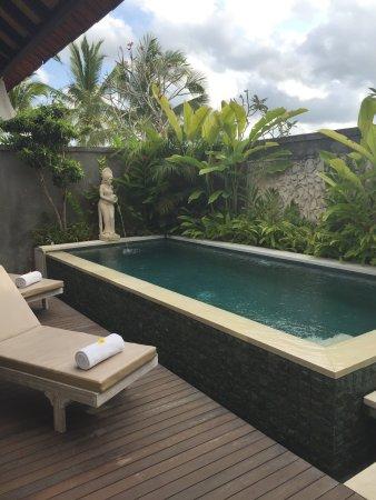 Beautiful setting, villa & staff