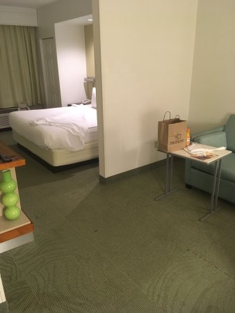 SpringHill Suites Newark Liberty International Airport: photo0.jpg