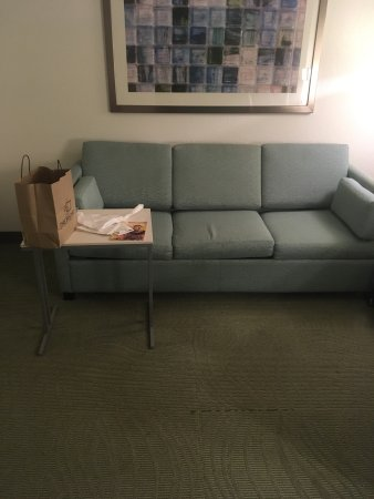 SpringHill Suites Newark Liberty International Airport: photo1.jpg