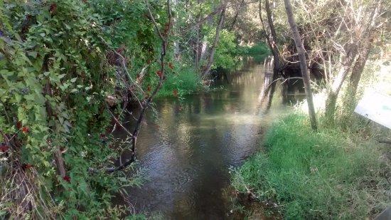 Vernon, Canada: River through the marshlands