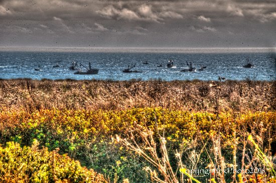 Pescadero, Californie : Fishing boats at sunset