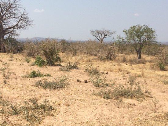 Iringa, Tanzania: photo2.jpg