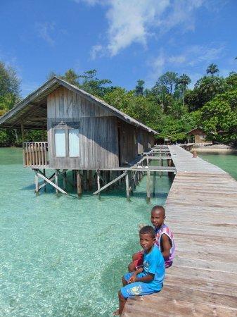 Hamueco dive resort raja ampat indonesia review hotel perbandingan harga tripadvisor - Raja ampat dive resort reviews ...