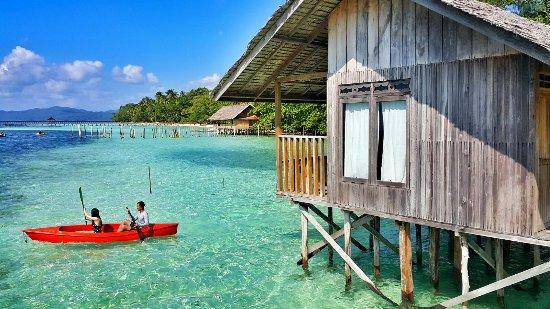 Hamueco dive resort raja ampat updated 2018 prices hotel reviews indonesia tripadvisor - Raja ampat dive resort reviews ...