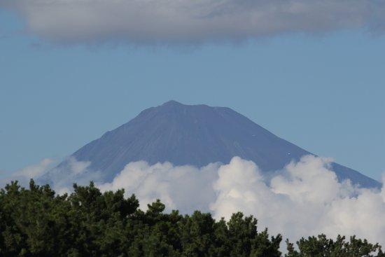 Miho Seacoast (Miho no Matsubara Beach): Mt. Fuji