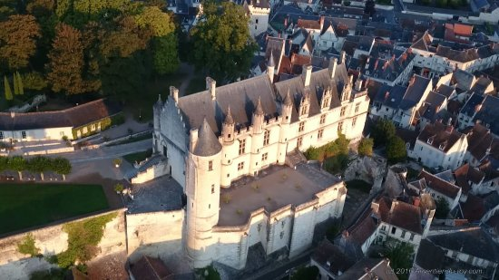 Thure, ฝรั่งเศส: Chateau de Loches
