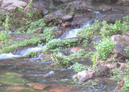 Headwaters of the Sacramento River, Mount Shasta City Park Mount Shasta. CA