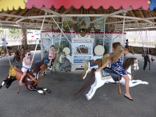 Flying Horse Carousel: Great Fun for the Kids