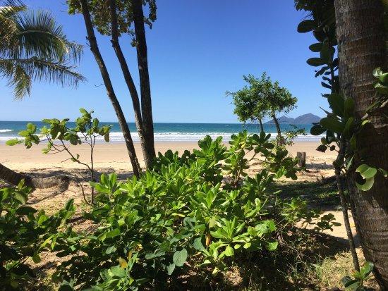 Jackaroo Treehouse Mission Beach: photo1.jpg
