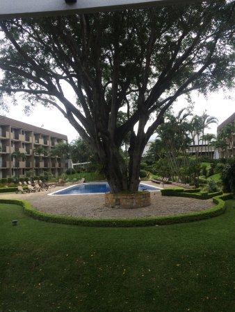 BEST WESTERN Irazú Hotel & Casino: Grounds/pool