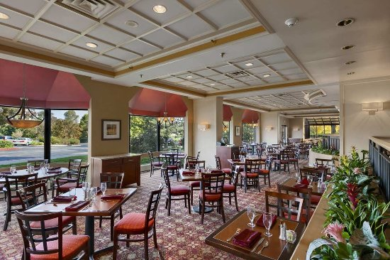 Wayne, Pensilvania: The Grille at Chesterbrook