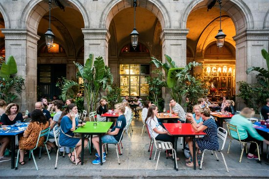 Copas Al Centro De Barcelona Opiniones De Viajeros Sobre