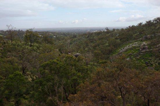 Mundaring, أستراليا: John Forest National Park