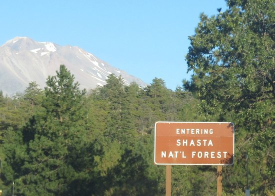 Shasta-Trinity National Forest: Shasta- Trinity National Forest, CA