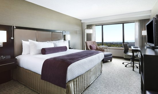 Milpitas, CA: King Bed Guest Room