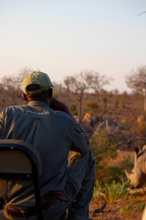 Notten's Bush Camp: Our tracker